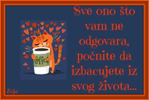 maca pije kafu