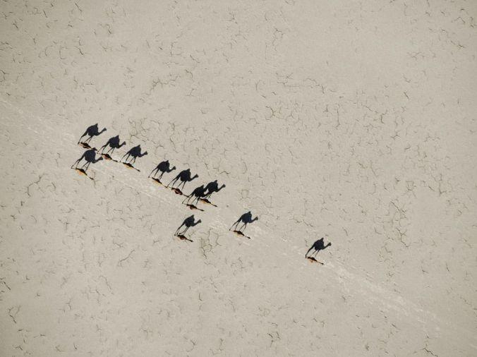 camels-aerial-johns_31414_990x742